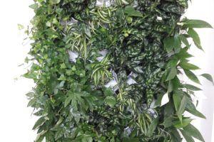 1-Ściana-zielona-tlenowa-newgardenstyle-nowoczesne-ogrody-ogrody-wertykalne-1-300x200