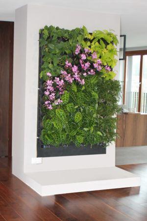2-5-Ściana-zielona-tlenowa-newgardenstyle-nowoczesne-ogrody-ogrody-wertykalne-300x450