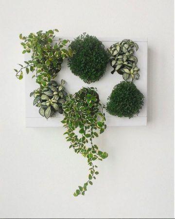 Ogrody-pionowe-orody-wertykalne-zielona-ściana-12-New-Garden-Style-360x450