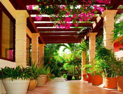 Ogród - obraz